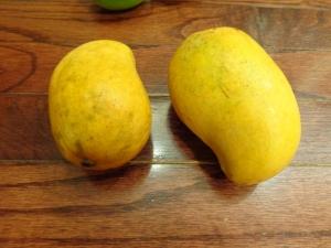 two champagne mangos